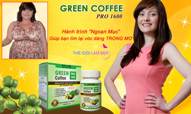 Banner Green Coffee Pro 1600-123
