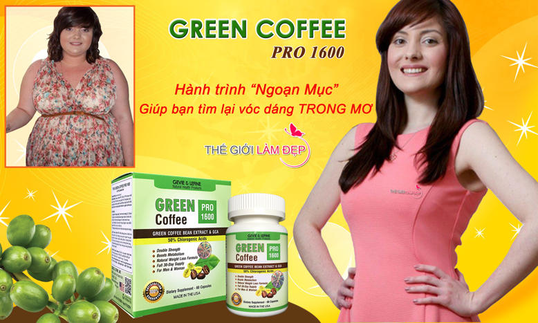 Banner Green Coffee Pro 1600 mg-12