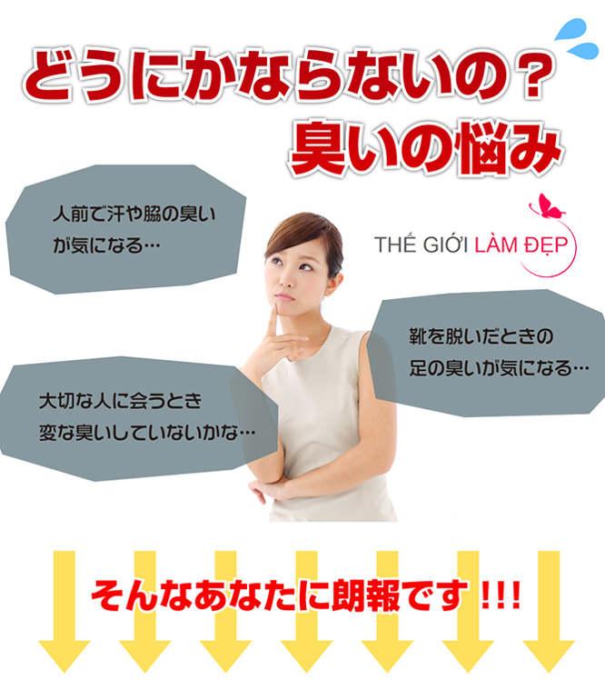 DM Deo macaron Nhật Bản 3