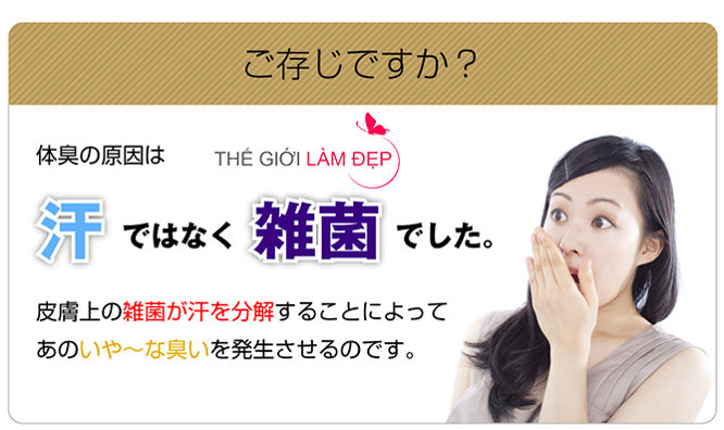 DM Deo macaron Nhật Bản 6