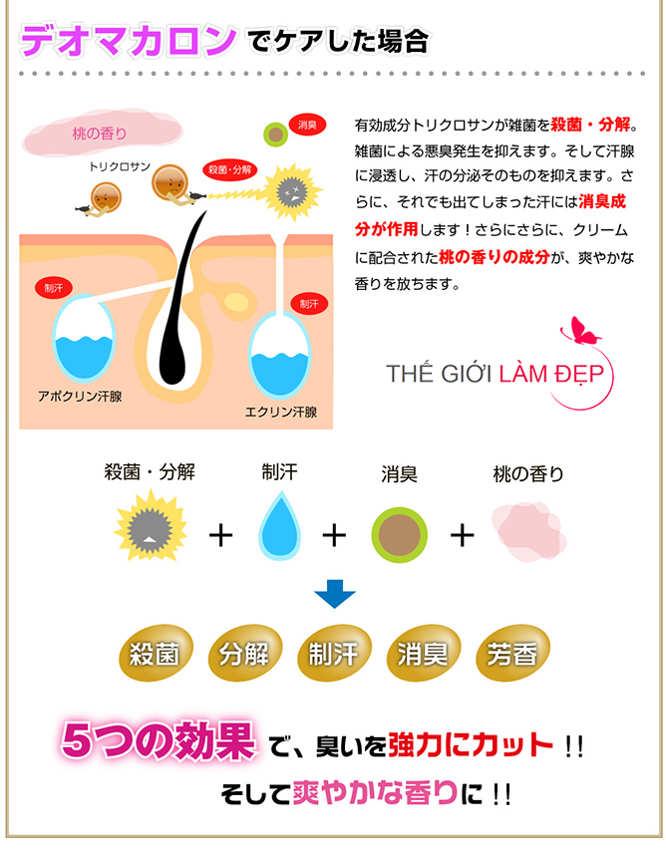 DM Deo macaron Nhật Bản 8