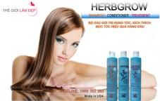 Dau goi tri rung toc Herbgrow Shampoo 11