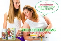 Green coffee 800mg-Green Coffee Bean Extract 11