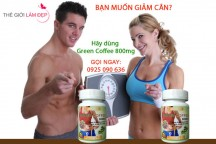 Green coffee 800mg-Green Coffee Bean Extract 12