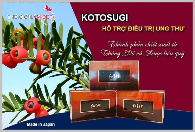 Kotosugi - Thuốc điều trị ung thư Kotosugi Nhạt Bản 1-1