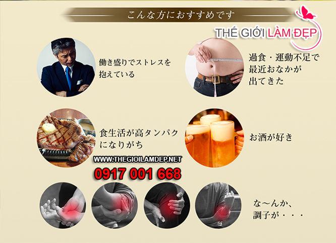 The goutto 240 vien Nhat Ban 3