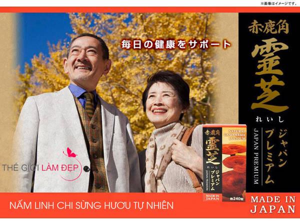 Vien nam linh chi sung huou tu nhien Nhat Ban 001